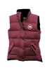 Ladies Freestyle Vest  2832L